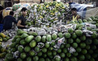 全美已經有12個州的47位民眾或因食用「馬拉多爾木瓜」而生病,目前有一人死亡。 (Goh Chai Hin/AFP/Getty Images)