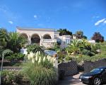典雅的地中海风格建筑配上棕榈系植物,热带气息扑面而来。(湾区建筑师Susan Chen 提供)
