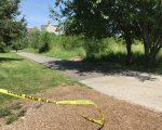 凯辛娜走廊公园的小路两旁杂草丛生,成犯罪分子作案地,为行人带来安全隐患。图为性侵案案发环境,警方调查的警戒线还留在那里。 (林丹/大纪元)