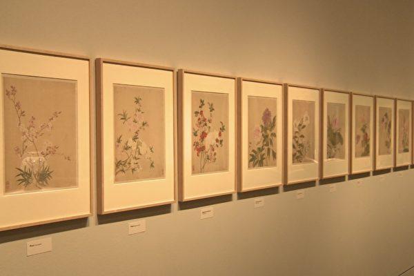 中国清代著名女性花鸟画家恽冰所画的《十二月花卉册》。(大纪元)