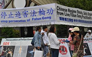 温哥华人踊跃签名 吁制止中共活摘器官罪行