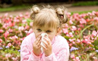中醫治療過敏性鼻炎完全是針對體質進行調整,從整體出發,內外兼治。(Fotolia)