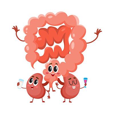 情绪变化和肠道健康环环相扣。(Fotolia)