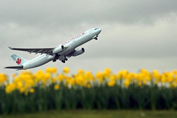 美国航空管理部门正在调查加航空中客车在美国旧金山机场降落事故。图文一架加航班机(ADRIAN DENNIS/AFP/Getty Images)