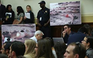 從動用火燒皮膚、「德國椅子」刑罰到電擊生殖器、強姦女性等,阿薩德就是用此類殘忍手段來給數萬名被關在監獄中的政治犯製造恐懼,讓異己者失聲。(Photo by Alex Wong/Getty Images)