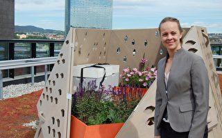 """屋顶养蜂 世界各地城市掀起甜蜜""""蜂""""潮"""