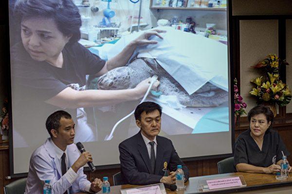 2017年3月21日,朱拉隆功大學海洋動物研究中心的獸醫Nantrika Chansue在聽取其他獸醫報告撲滿的死因。 (ROBERTO SCHMIDT/AFP/Getty Images)