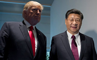 7月8日,川普與習近平在德國漢堡舉行了第二次川習會(SAUL LOEB/AFP/Getty Images)