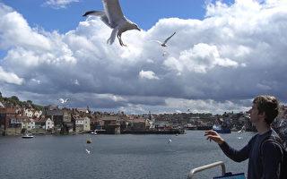 英格蘭海邊小鎮惠特比遊記 此行不為炸魚薯條?