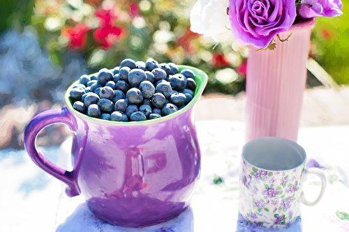 藍莓。(Jill Wellington/CC/Pixabay)