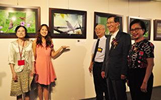 美不胜收!全国最大鸟类摄影展在竹县美术馆