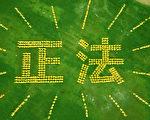 """在多伦多Riverdale公园,700多名法轮功学员首次排出巨大的""""正法""""二字,展示法轮大法的光明和美好。(Erin Lin/大纪元)"""