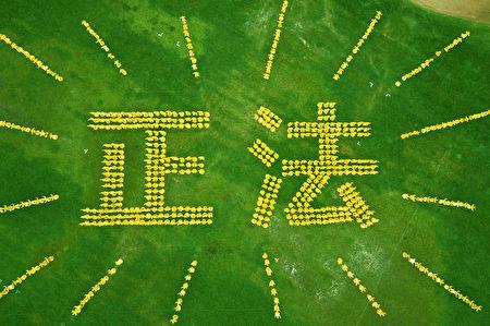 在多倫多Riverdale公園,700多名法輪功學員首次排出巨大的「正法」二字,展示法輪大法的光明和美好。(Erin Lin/大紀元)