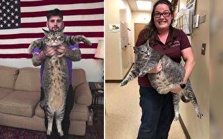(視頻截圖,Chatham County Animal Shelter/大紀元合成)