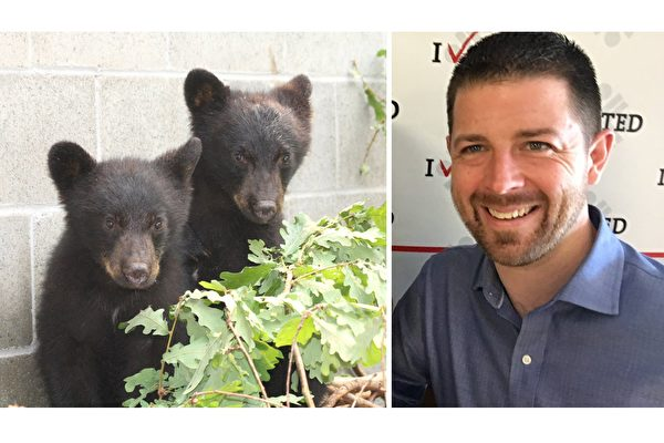(Facebook:North Island Wildlife Recovery Centre, Bryce Casavant/大紀元合成)