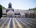 普羅旺斯最熱門的地區也是擁有最大片薰衣草花園的的地區是瓦朗索爾(Valensole)以及索村(Sault)。(歐棒巴黎提供)