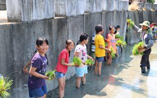 学童体验一日农夫甘苦 彰化家扶中心举办夏令营
