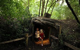树屋完美假日——在英国圆儿时的梦 Tree House