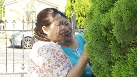 明慧學校老師 Belle Cho家裡柏樹上就有優曇婆羅花(楊陽/大紀元)