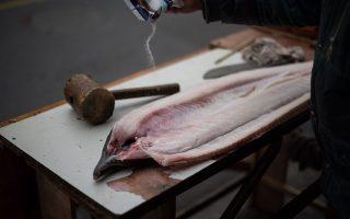 在中國許多地區,會將新鮮的漁獲製成鹹魚乾,讓食材容易存放。 (Johannes Eisele/AFP/Getty Images)