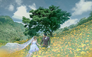 新人們期望在婚禮當天魔幻般成為世界上最美麗的新娘,婚紗更具展現和增加新娘身形之美的特質!(台灣華納婚紗提供)