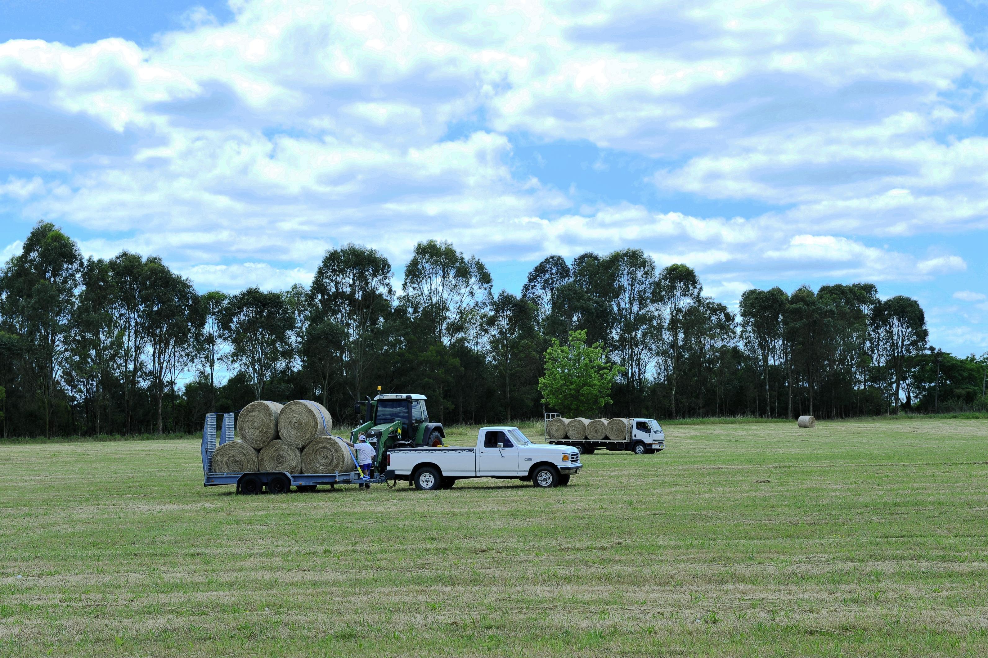 澳洲的年轻农民未能免受高房价之苦