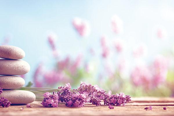 """草本美容中薰衣草是公认对人体最具镇静、舒缓、愈合、催眠作用的""""百草之王""""。(Shutterstock)"""