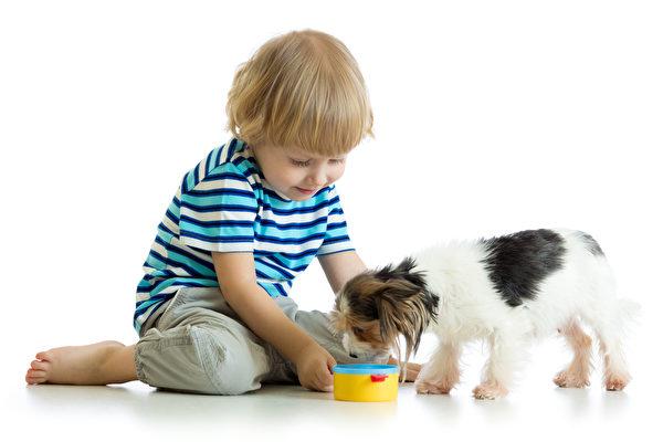 不要讓小狗吃巧克力,否則牠可能會生病。(Fotolia)