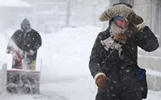 美国人用古法预测天气:美东今年多雪高寒