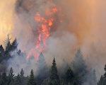 大火调查员说,开枪点燃了优胜美地国家公园附近的毁灭性野火,摧毁131栋建筑,包括63间住宅。图为2013年优胜美地的野火。( Justin Sullivan/Getty Images)