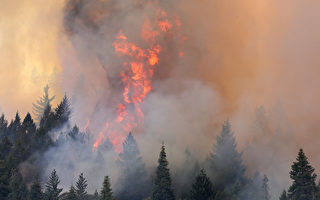 大火調查員說,開槍點燃了優勝美地國家公園附近的毀滅性野火,摧毀131棟建築,包括63間住宅。圖為2013年優勝美地的野火。( Justin Sullivan/Getty Images)