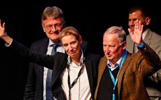 德国选项党AfD:严控难民