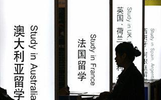 圖為一個中國學生在查詢各種出國項目。(STR/AFP/Getty Images)