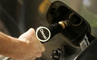 为了避免柴油车禁令,各大汽车商近来纷纷召回有问题的车辆,以改善尾气排放软体。(Mark Renders/Getty Images)