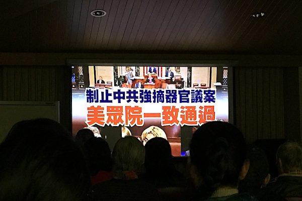 8月12日,澳洲墨爾本博士山市政廳(Box Hill Town Hall)舉行紀錄片《活摘·十年調查》首映式。(李欣然/大紀元)