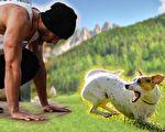 遇到凶狗扑过来,一个下蹲会吓住它。(Pixabay/大纪元合成)