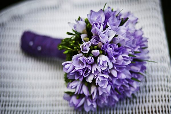 紫色心情。(Pixabay)