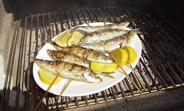 沙丁鱼。(passthesource/CC/Pixabay)