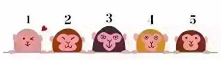 5只可爱的猴子,哪一只更可爱的呢?