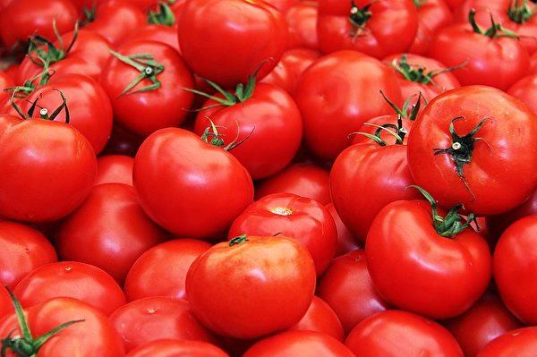 番茄。(Sharon Ang/CC/Pixabay)