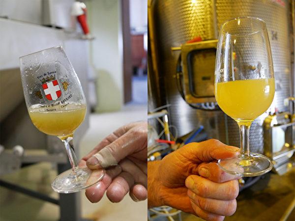 百分百原汁原味的白葡萄汁。(龔簡/大紀元)