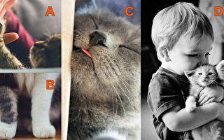 图中哪张图片最令你融化? 看出与你交往有多幸福