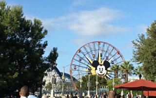 迪士尼加州冒險樂園。(姜琳達/大紀元)