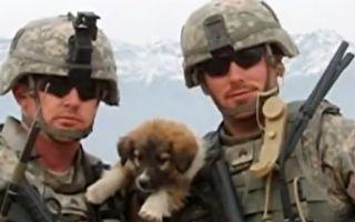 """左:杜克与战友和小萨沙的合影。右:杜克给""""勇士的希望""""(Hope for the Warriors)组织写的陈情信。(视频截图/大纪元合成)"""