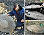 """近年,在俄罗斯和中国不同地区均发现一些神秘的远古""""飞碟石""""。(视频截图/大纪元合成)"""