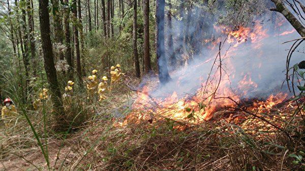 羅東林管處巡山員進行森林火災防救工作。 (羅東林管處提供)