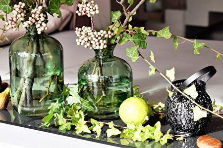 長春藤可做室內裝飾。(Pixabay)