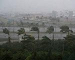 9月10日艾玛(Irma)飓风给佛罗里达州迈阿密带来狂风暴雨。艾玛在9月10日恢复为4级风暴的强度,直扑佛罗里达州。 (SAUL LOEB/AFP/Getty Images)