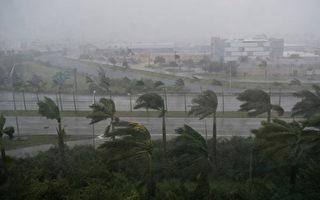 9月10日艾瑪(Irma)颶風給佛羅里達州邁阿密帶來狂風暴雨。艾瑪在9月10日恢復為4級風暴的強度,直撲佛羅里達州。 (SAUL LOEB/AFP/Getty Images)