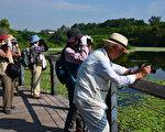 日本賞鳥團在鳥松濕地尋鳥蹤。(高雄市觀光局提供)